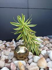 Gold 150mm Stainless Steel Ball